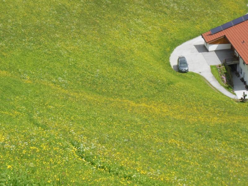 Blick von oben auf Hausnummer 40 und den Trampfelpfad