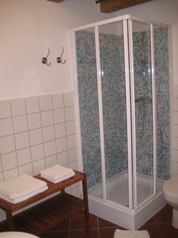Bild von einer Dusche in den Appartments im Sarffy House