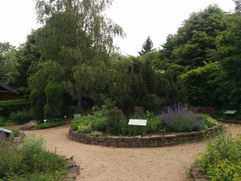 Apothekergarten im Kurpark Bad Marienberg am Rande der 7. Etappe des Westerwaldsteigs