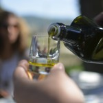Das zu testende Olivenöl von Tenuta NERI GIOVANNI E VALERIA