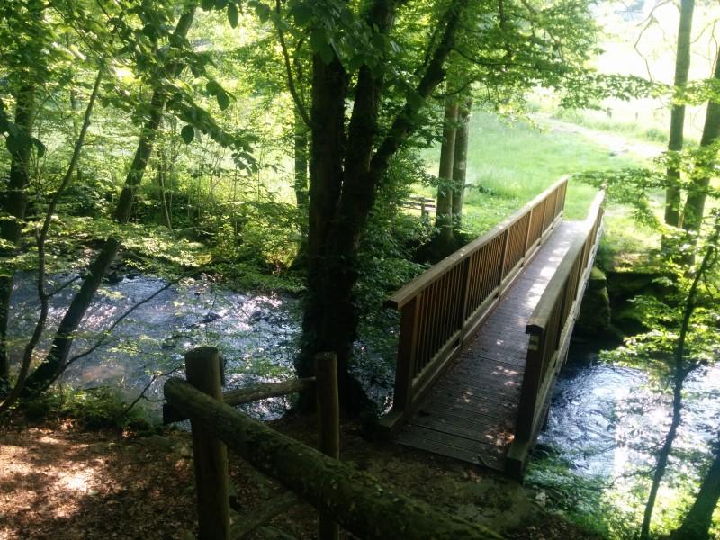 Westerwaldsteig Etappe 10: Brücke über die Kleine Nister