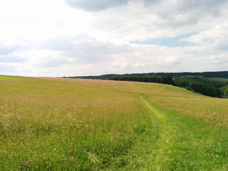 Westerwald Etappe 10: Wiesenweg