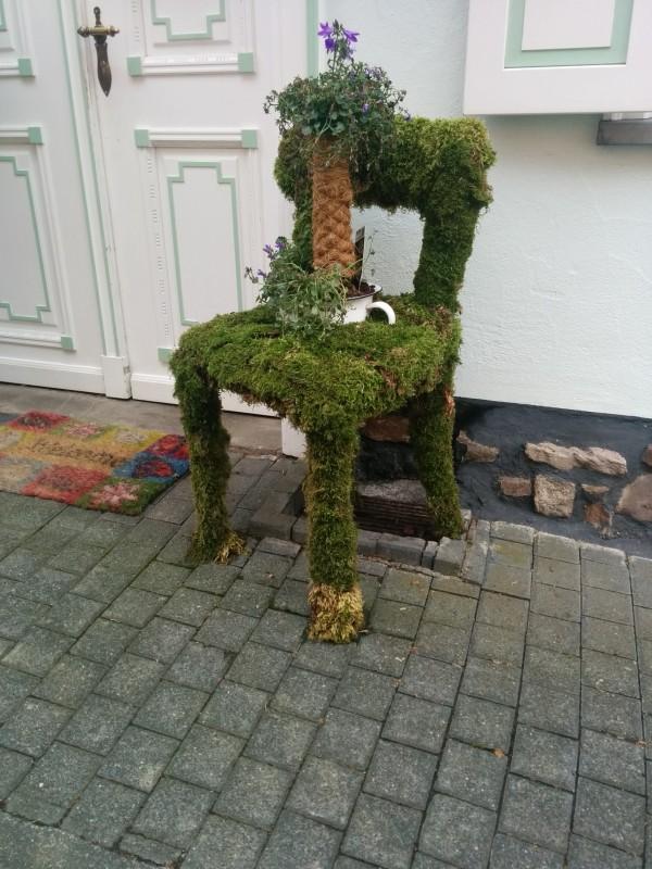 Hachenburg: Grün bewachsener Stuhl