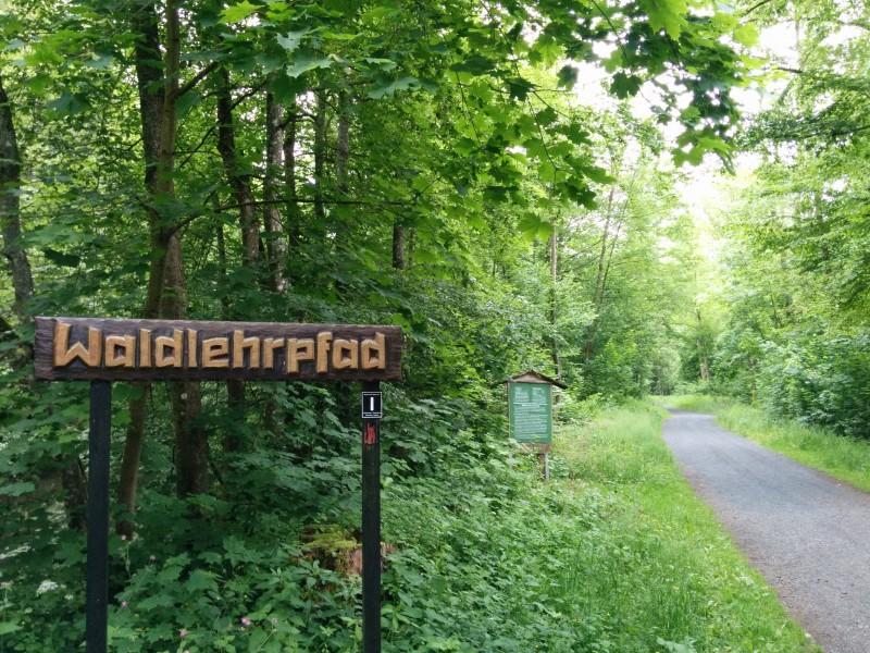 Westerwaldsteig Etappe 9: Beginn des WAldlehrpfades am Kloster Marienstatt