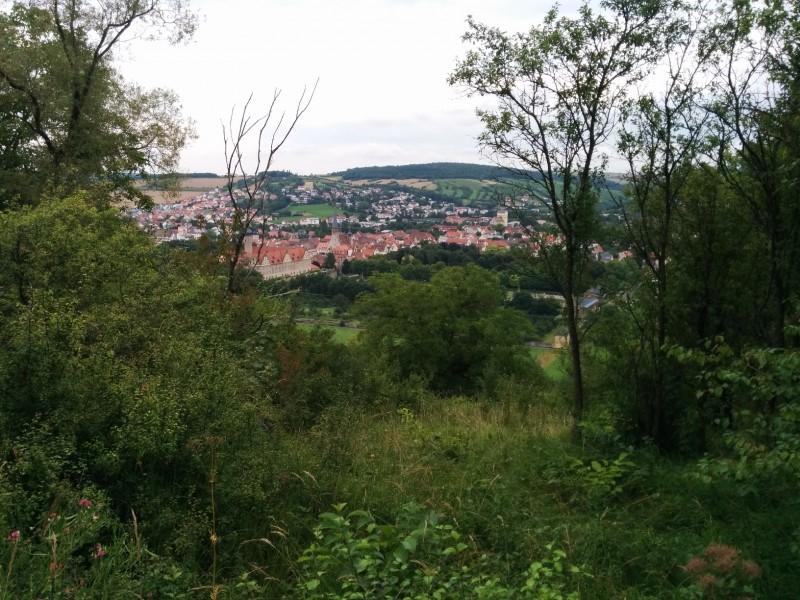 Blick auf Weikersheim vom Jakobsweg