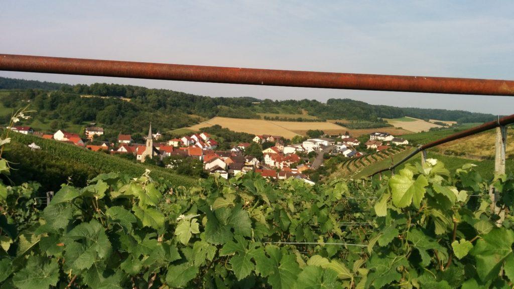 Blick zurück nach Beckstein auf dem Panoramaweg Taubertal / Jakobsweg