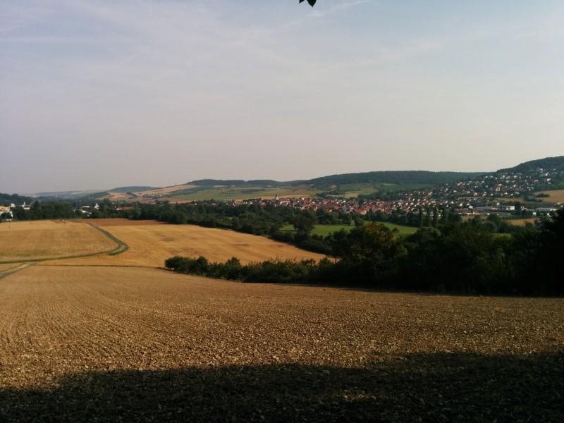 Ausblick von der Bank am Waldesrand in Richtung Königshofen