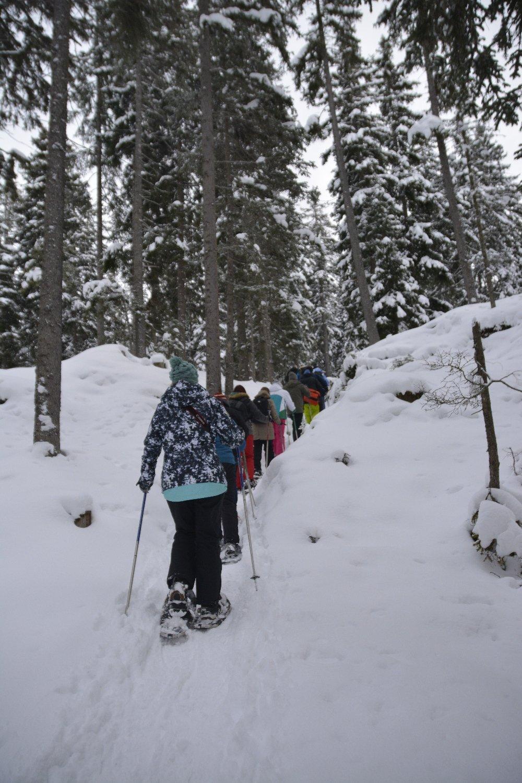 Die Meute des Fotoworkshops von Cewe beim Aufstieg mit Schneeschuhen