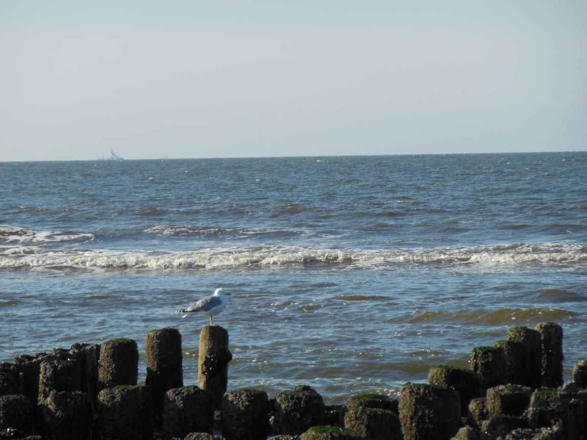 Strandspaziergang auf Norderney