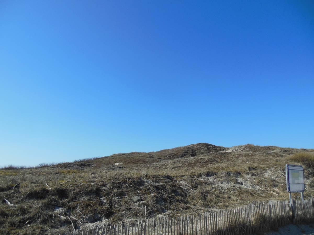 Blick vom Restaurant Weisse Düne auf Norderney