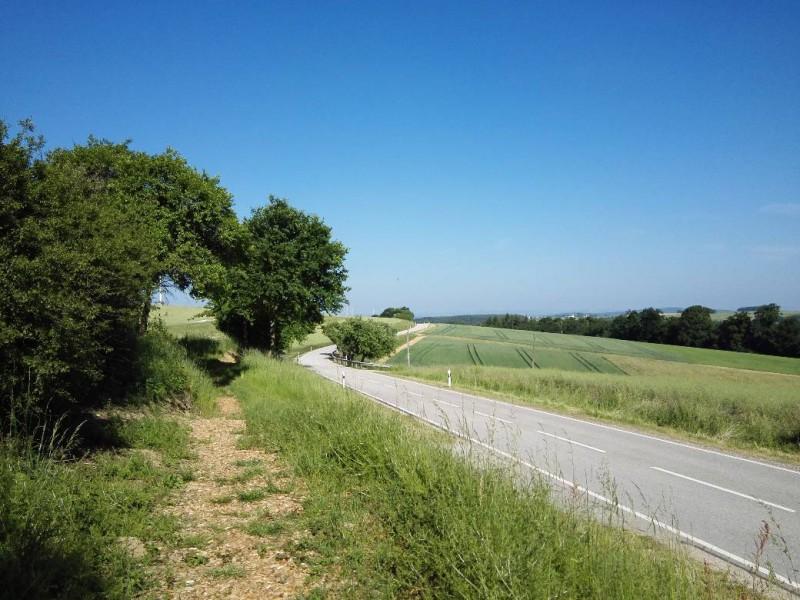 Frisch angelegter Weg auf der Verlängerung des Saar-Hunsrück-Steigs