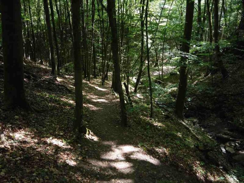 Saar-Hunsrueck-Steig-Etappe_21-Kastellaun-Schmausemuehle_56