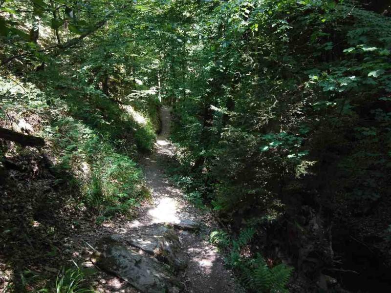 Saar-Hunsrueck-Steig-Etappe_21-Kastellaun-Schmausemuehle_58