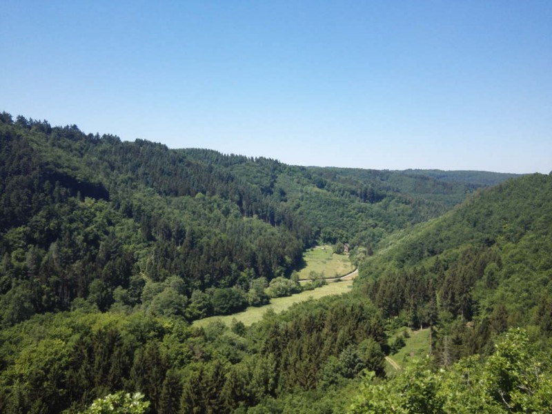 Immer öfter toller Ausblick hier auf dem Saar-Hunsrück-Steig kurz vor Morshausen