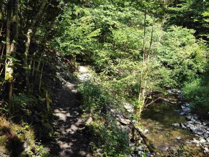 Schöne Wege im Baybachtal auf der Verlängerung des Saar-Hunsrück-Steigs