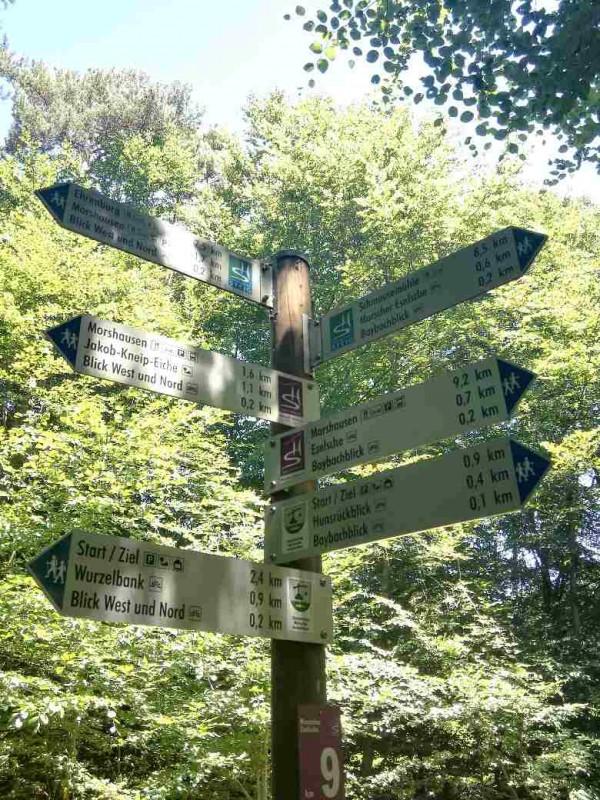 Schilderwald im Wald ;)