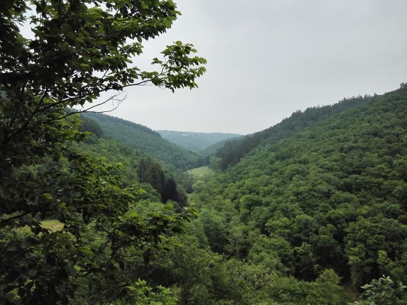 Was für ein Ausblick auf dieser Etappe auf dem Saar-Hunsrück-Steig