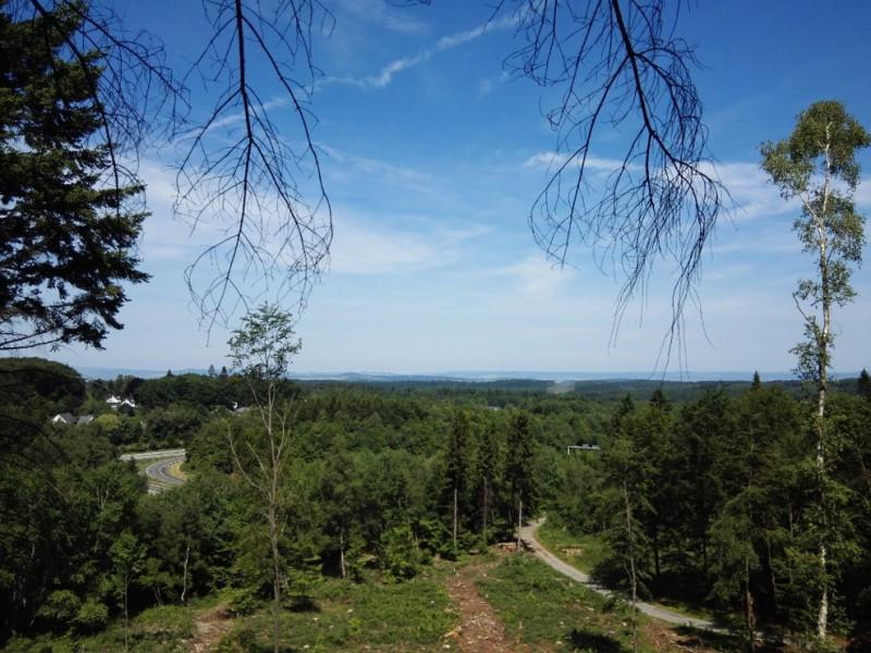 Ausblick, trotz Autobahn toll auf dem Saar-Hunsrück-Steig