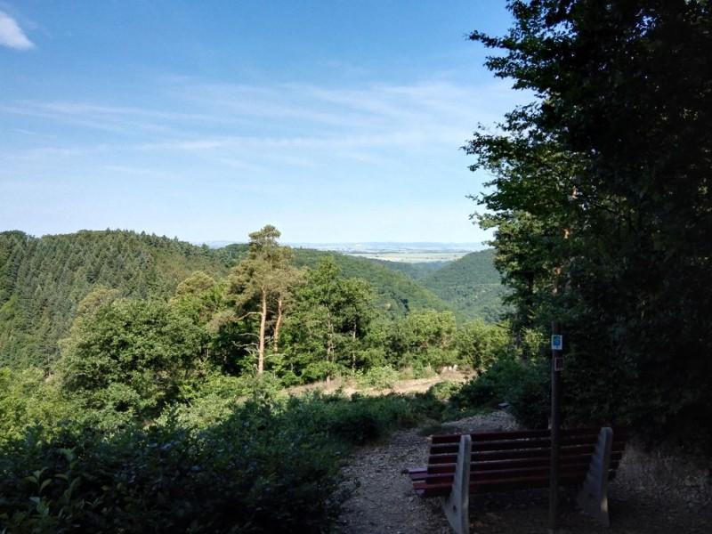 Herrliche Ausblick, wer will hier nicht einen Moment innehalten auf der Etappe 24 des Saar-Hunsrück-Steigs.