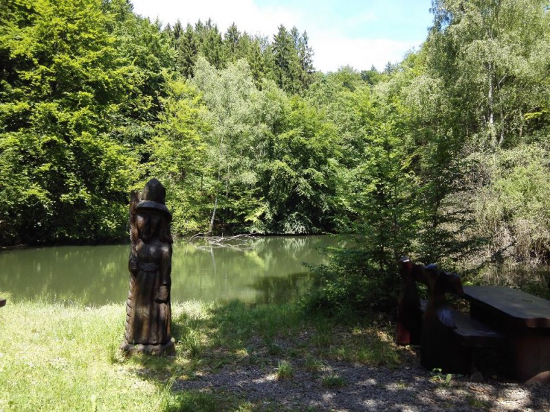 Saar-Hunsrueck-Steig-Oppenhausen-Boppard_20