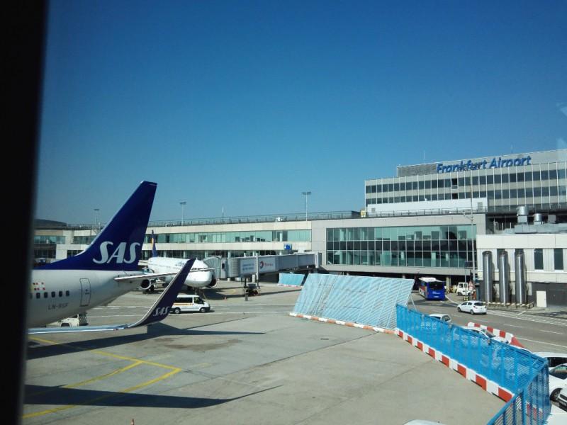 Flugzeug von SAS in FRA (nicht mein Flieger)