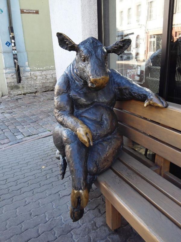 Das Vieh auf der Bank in Tallinn vor einem Steakhouse