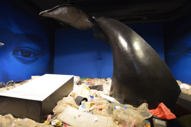 Verschmutzung der Ozeane