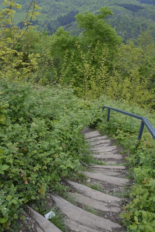 Schöner Weg abwärts von der Ruine Burg Drachenfels in Richtung Rhöndorf
