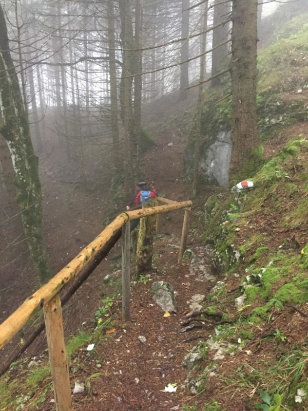 Abwärts geht es auf der Wandertrilogie von Pfronten nach Füssen