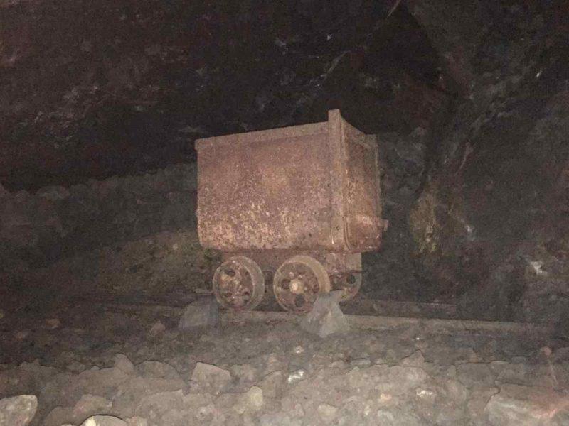 Ein Hund im Bergbau
