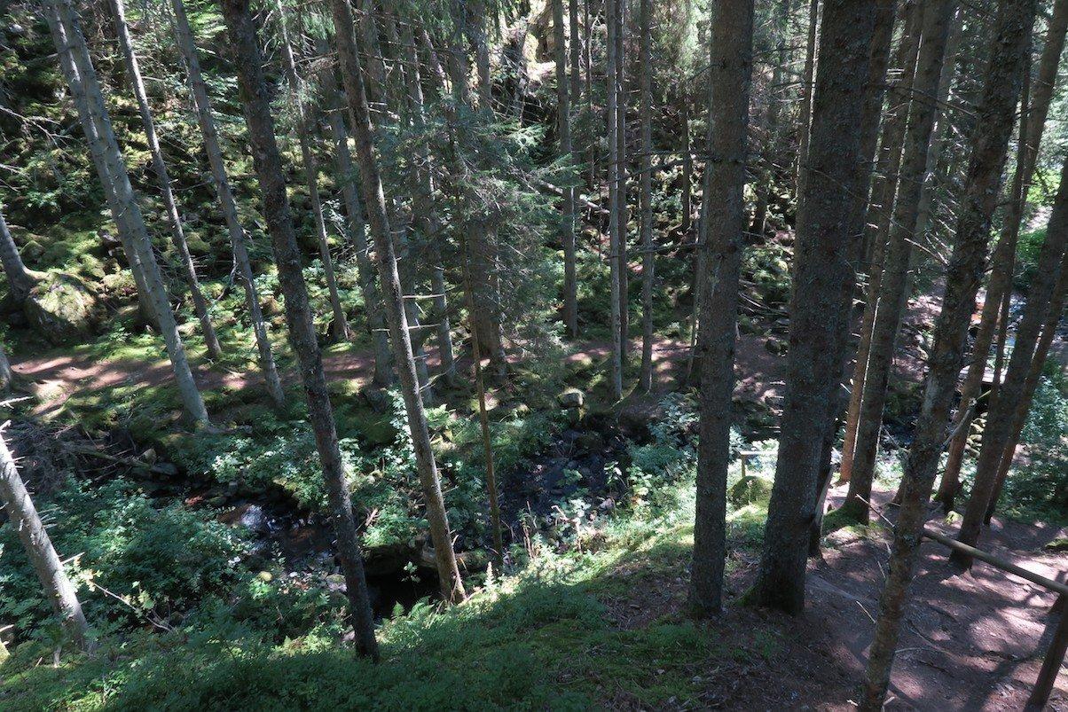 Rund 100 m geht es hier steil bergab