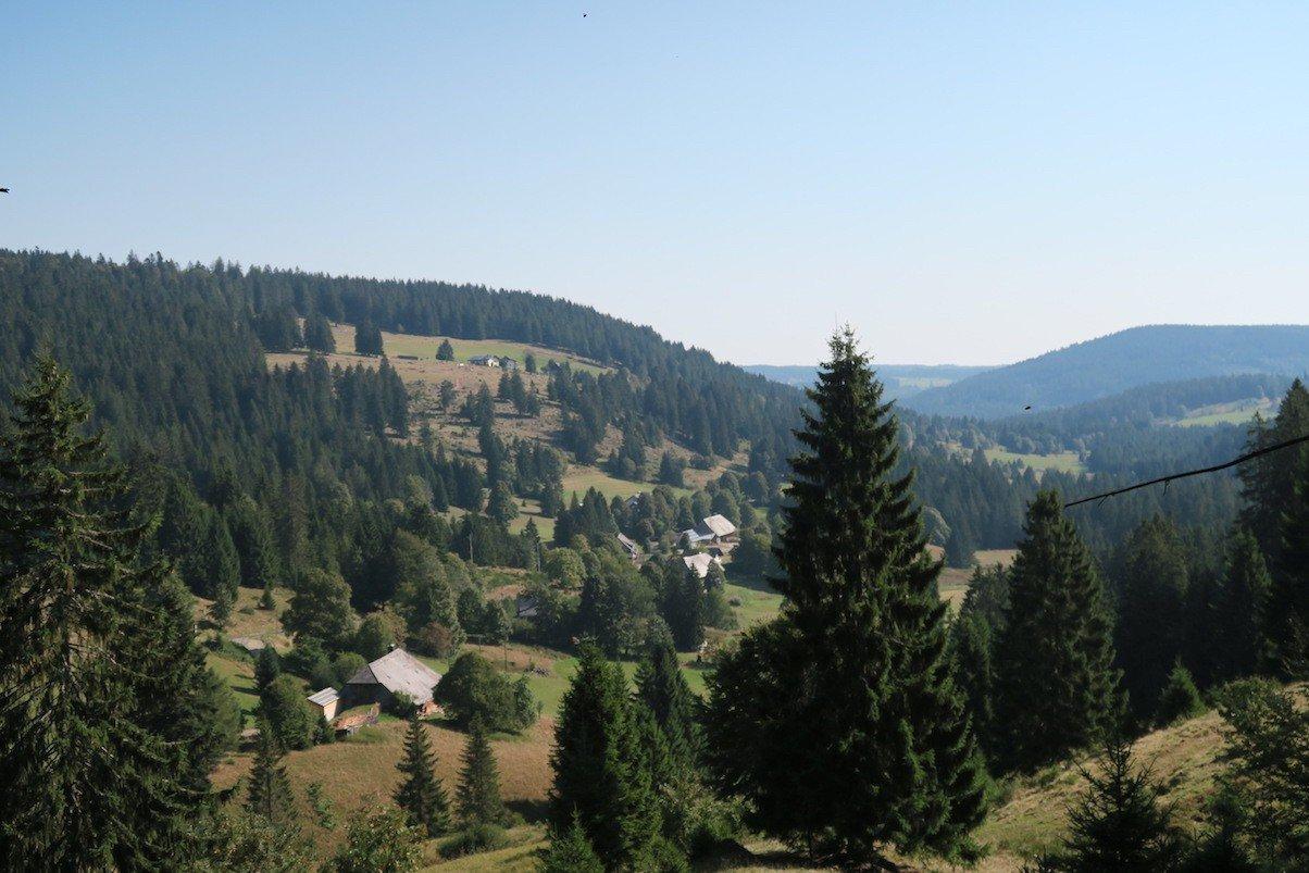 Der Ausblick kurz nach dem Wanderparkplatz Muchenland auf dem Schluchtensteig