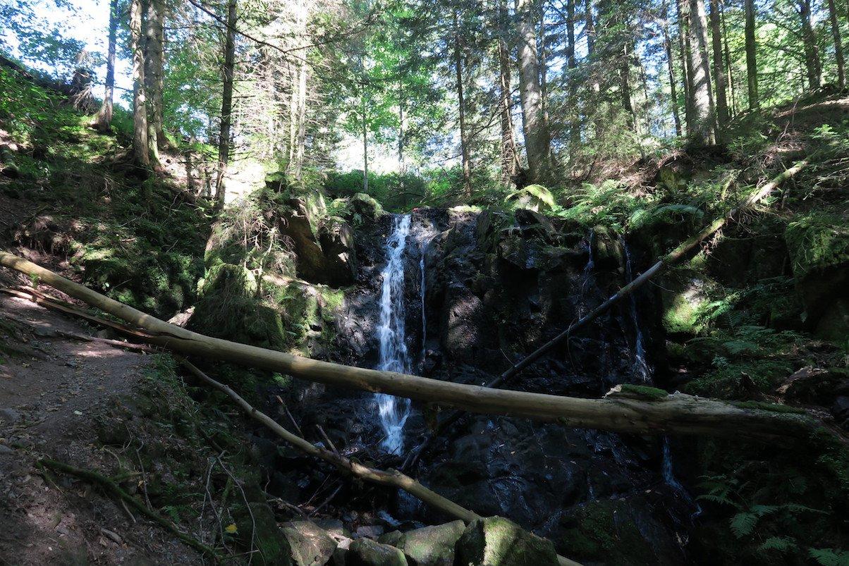 Der kleine Wasserfall zu Beginn der Windbergschlucht