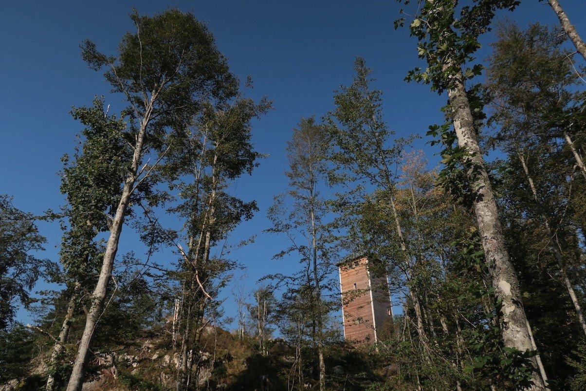 Der Lehenkopfturm vom Schluchtensteig aus kurz vor Ankunft dort