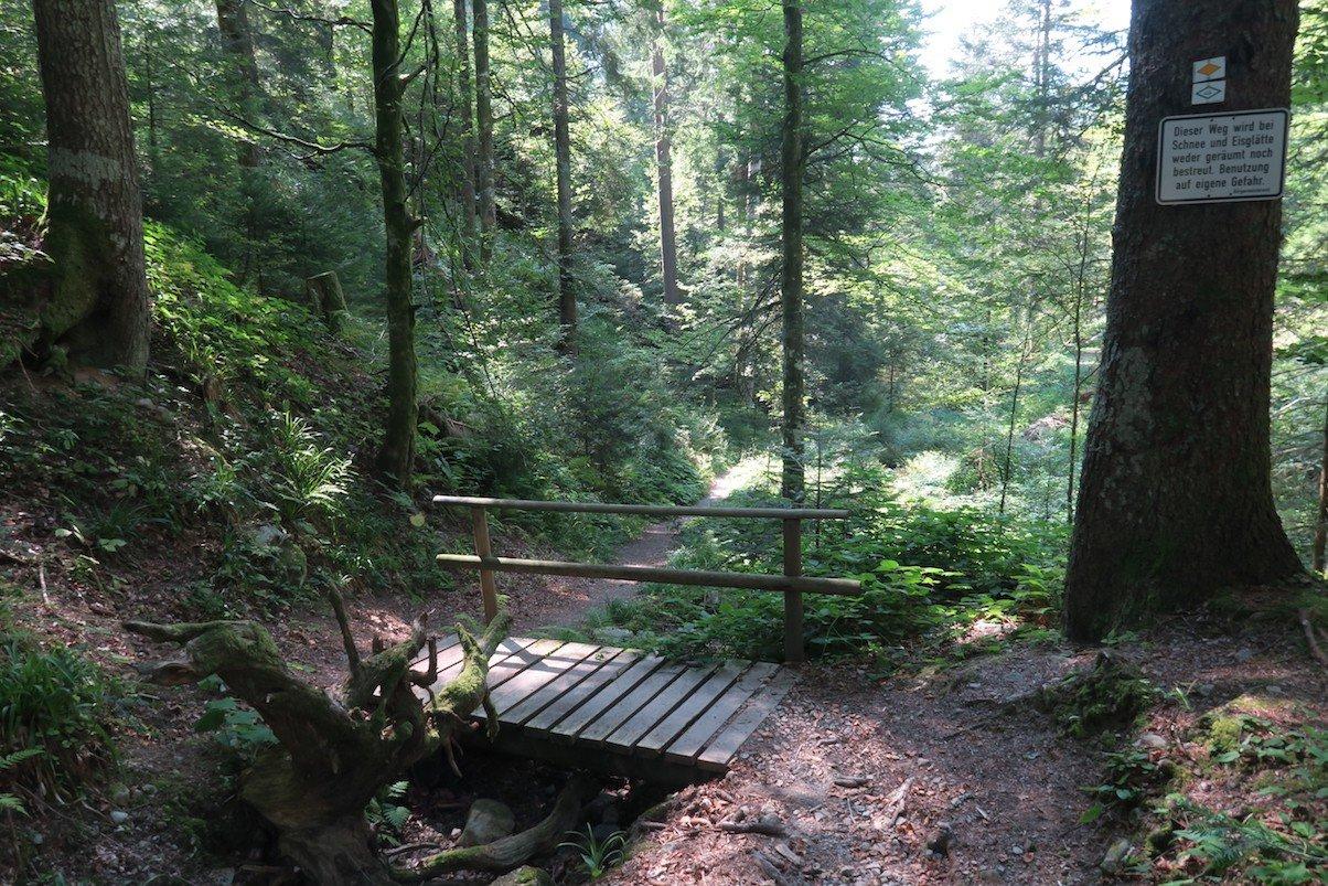 Brücke am Beginn einer kleinen Schlucht kurz vor Todtmoos