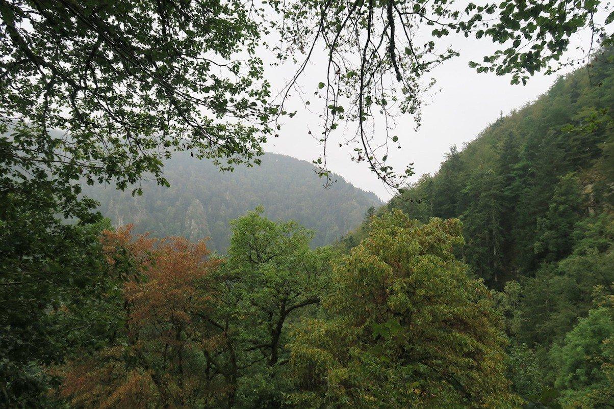Ausblick zur Felsenhütte, man könnte sich hier auch auf die Bank setzen...