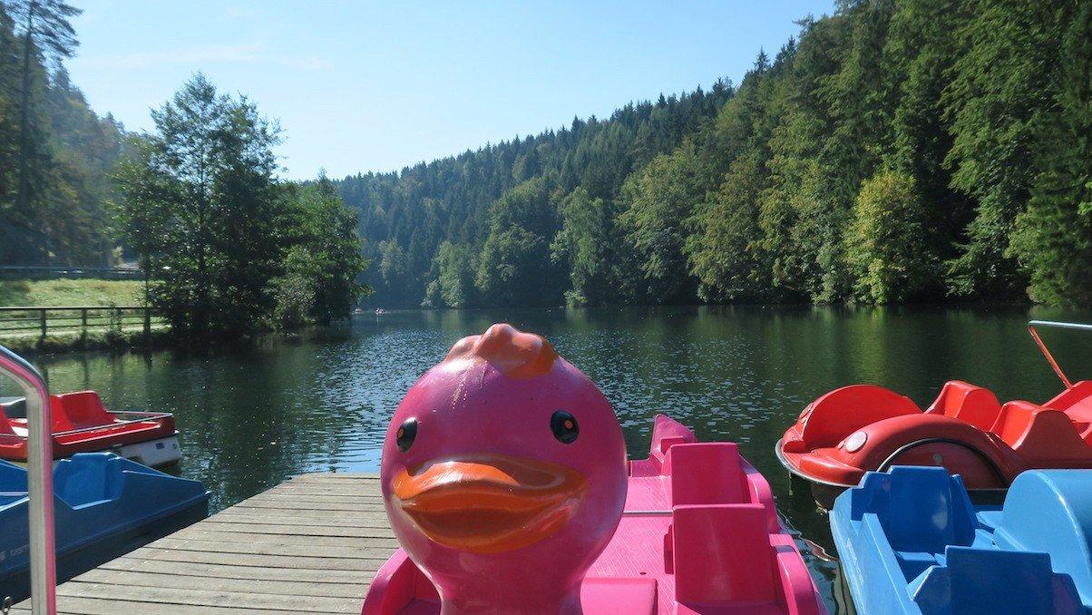 Ruder- und Tretboote für 7 EUR je angefangene halbe Stunde auf dem See bei Pottenstein