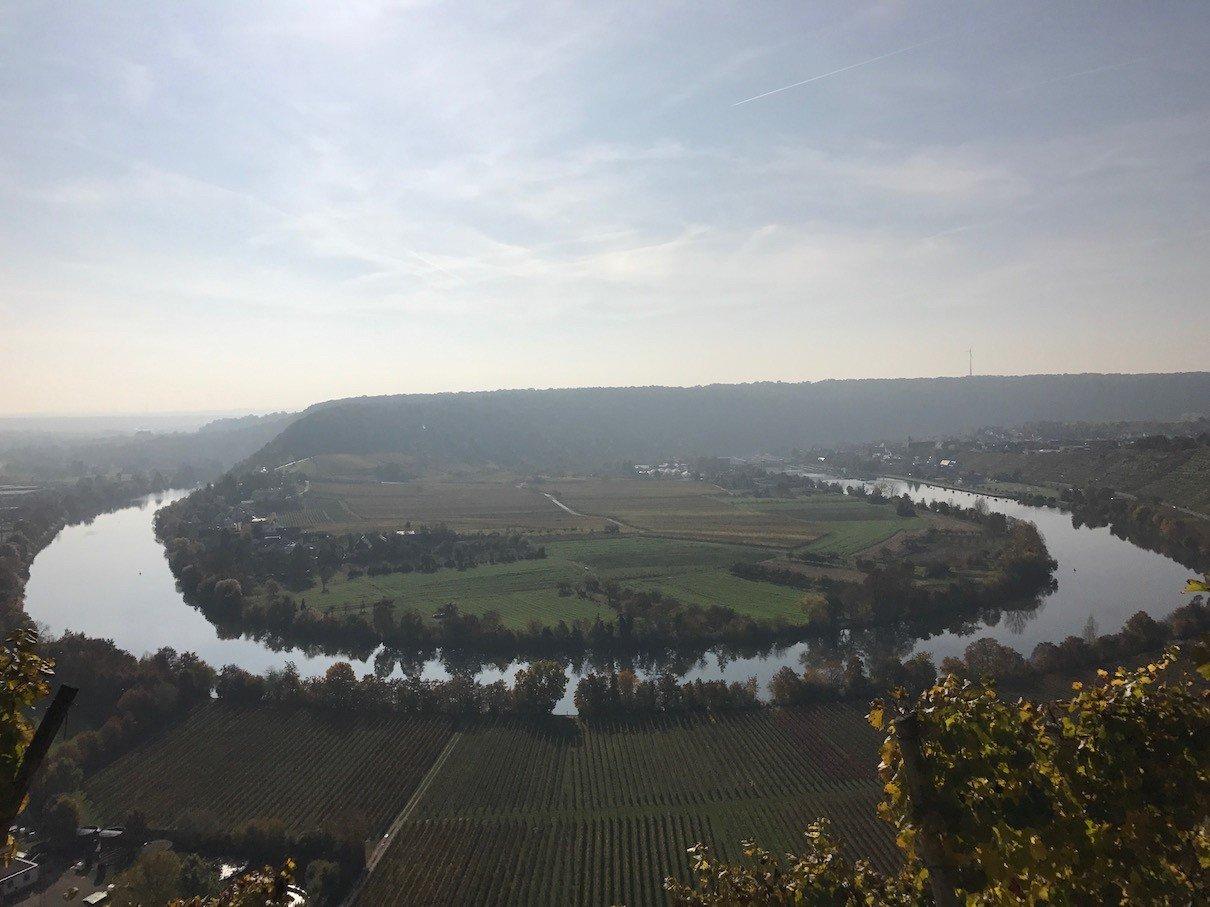 Die Neckarschleife zwischen Mundelsheim und Hessigheim gegen die Sonne fotografiert