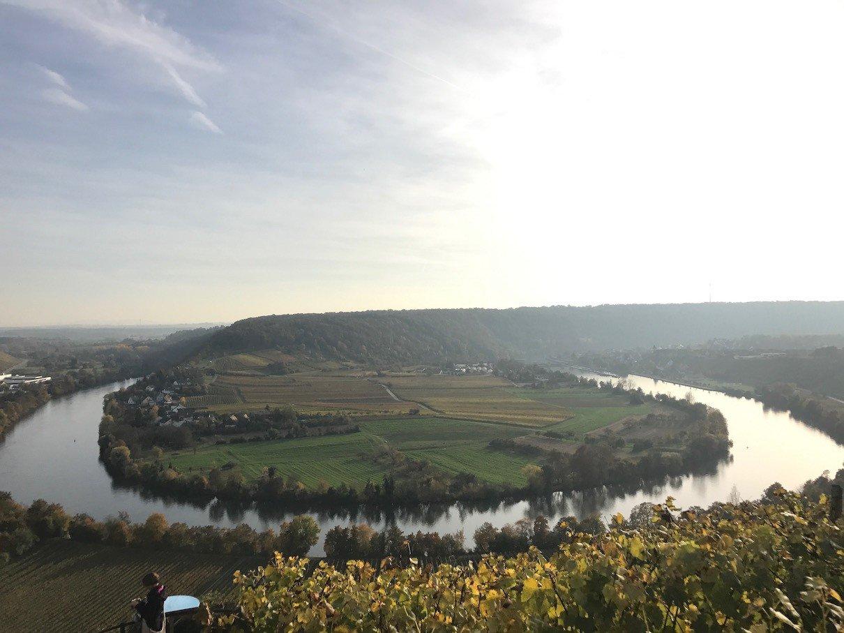 Blick auf die Neckarschleife um 15 Uhr am 1.11.