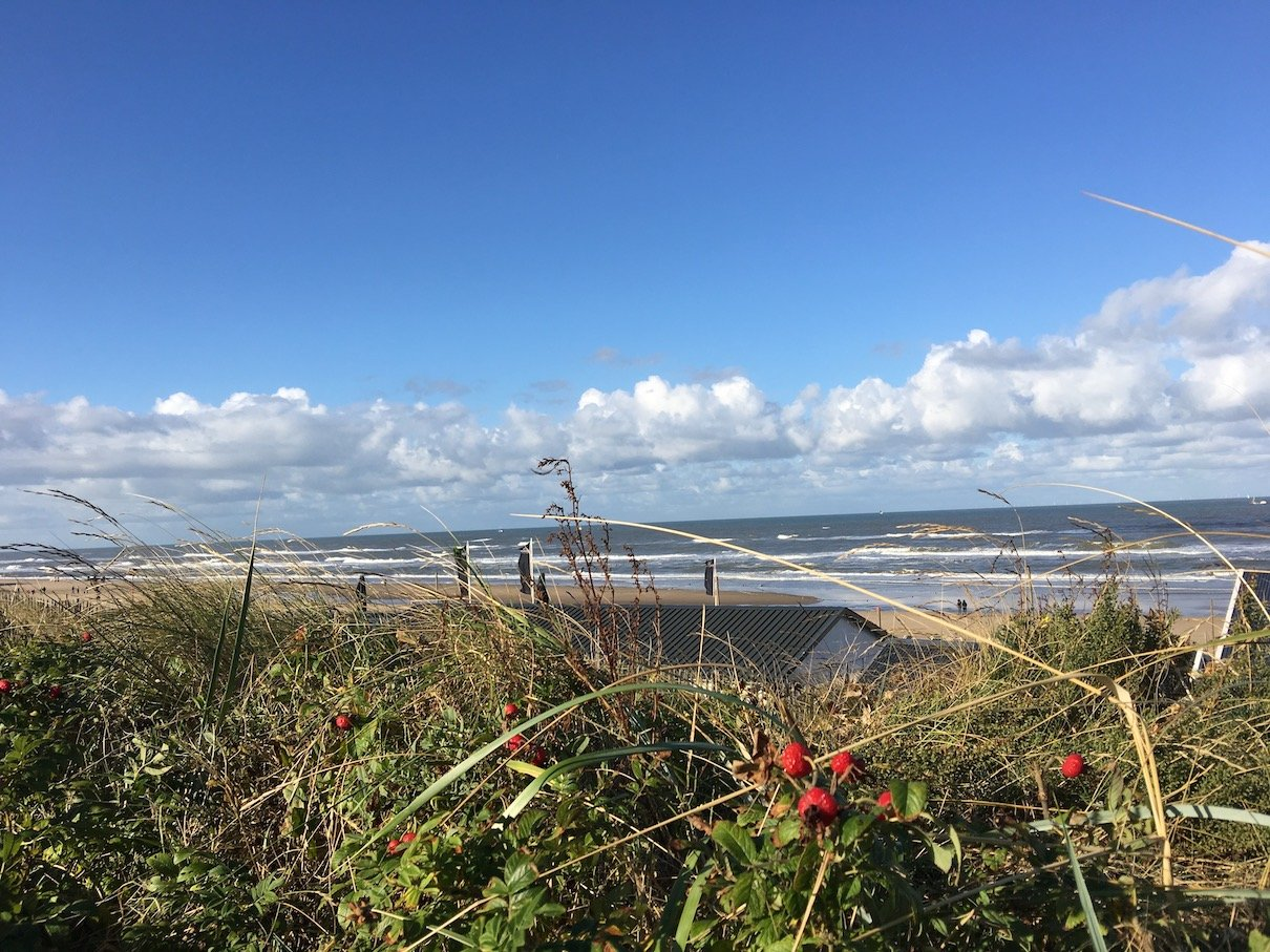 Herrlicher Blick auf's Meer