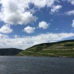 Weinberge und der Rhein
