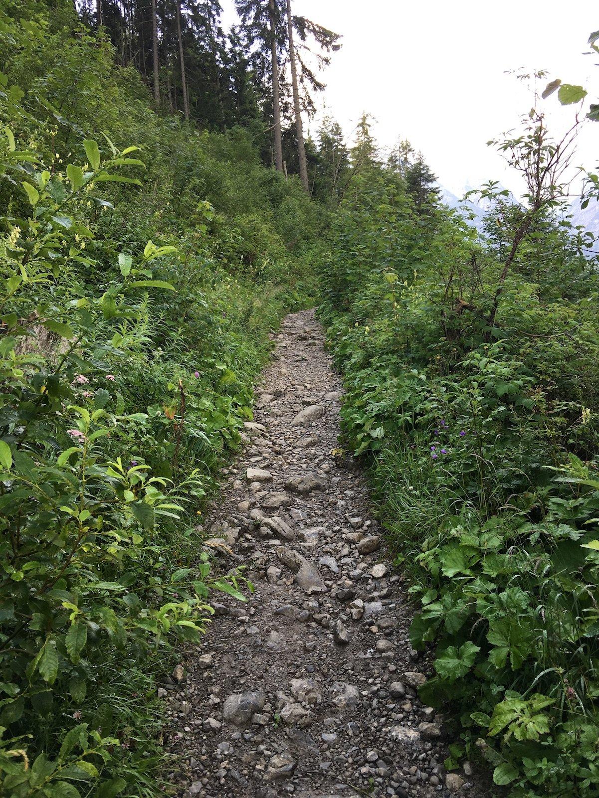 Steiniger Pfad auf dem Lechweg