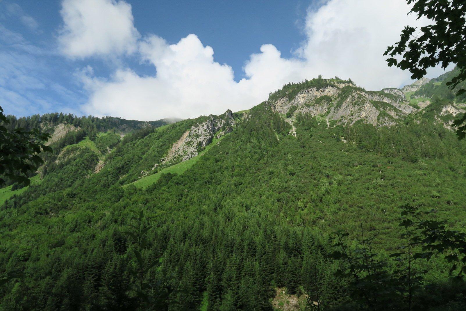 Ausblick auf dem Lechweg
