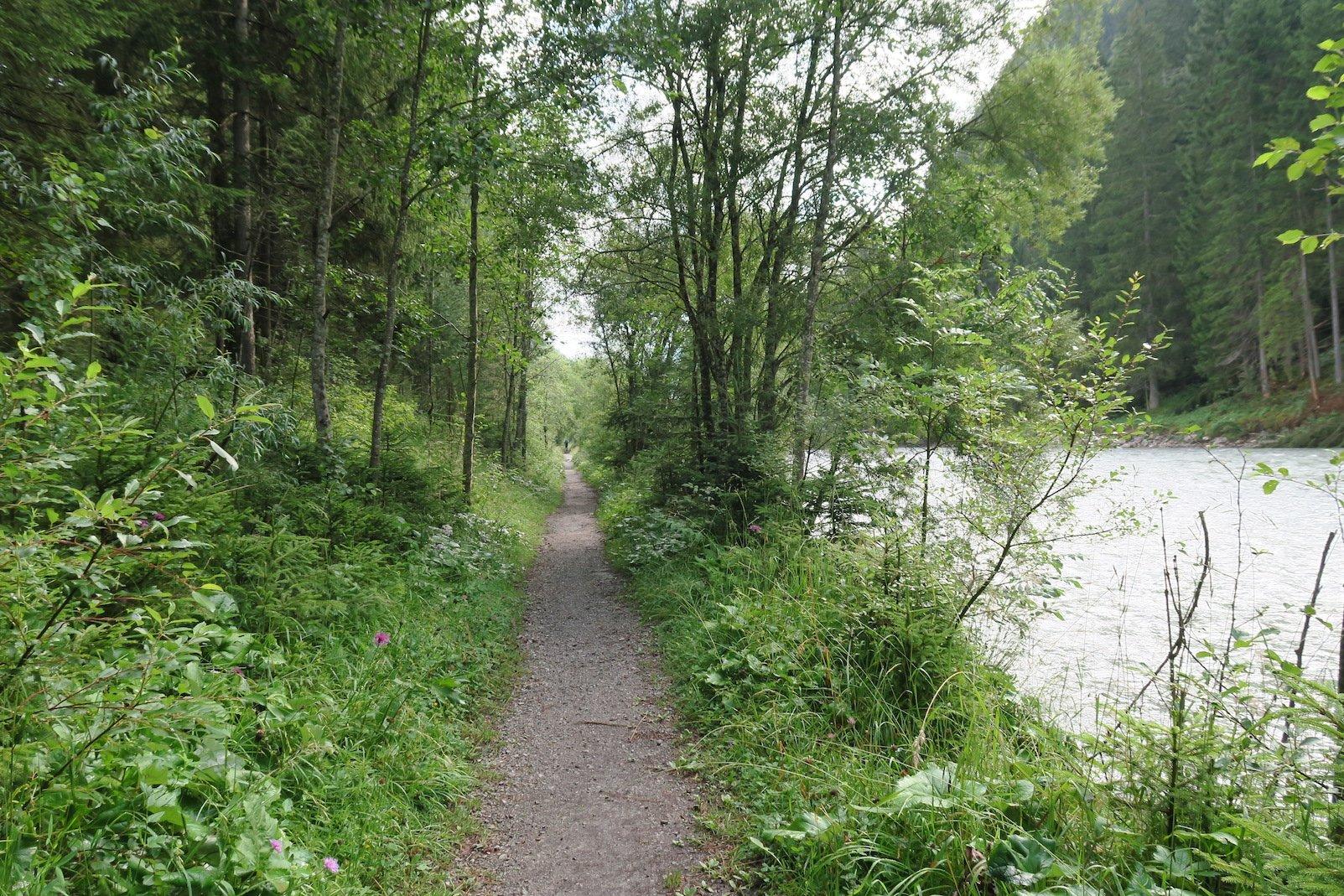 Schmaler Pfad am Lech entlang