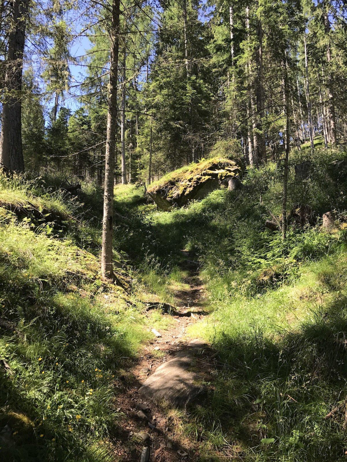 Steil geht es bergauf in Richtung Kaiserburg