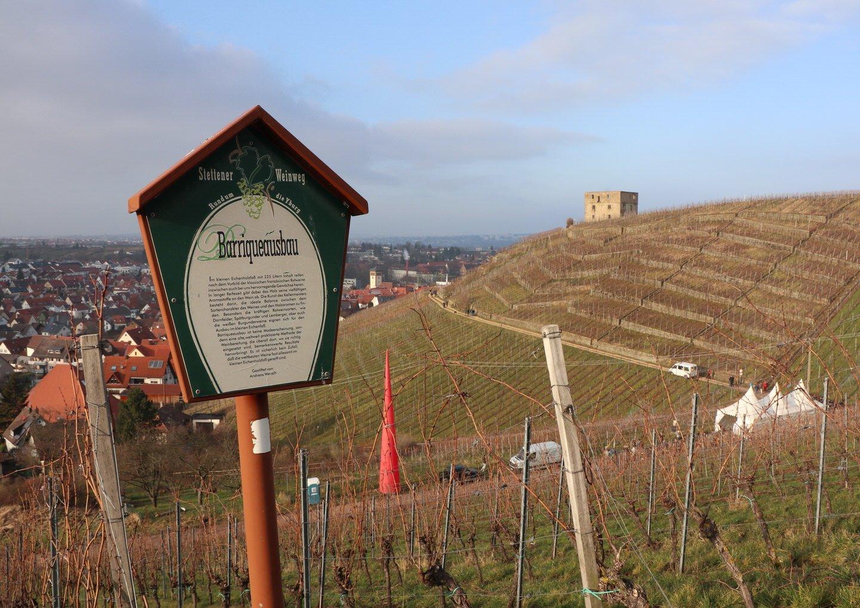 Immer wieder stosse ich auf Informationstafeln auf diesem Teil des WinterWeinwegs, der auf dem Weinlehrpfad verläuft