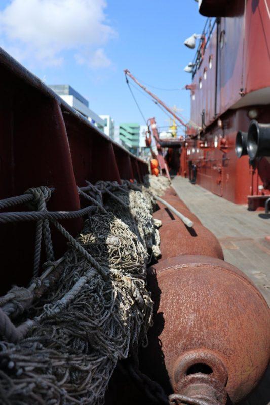 Fischnetze auf der Gera