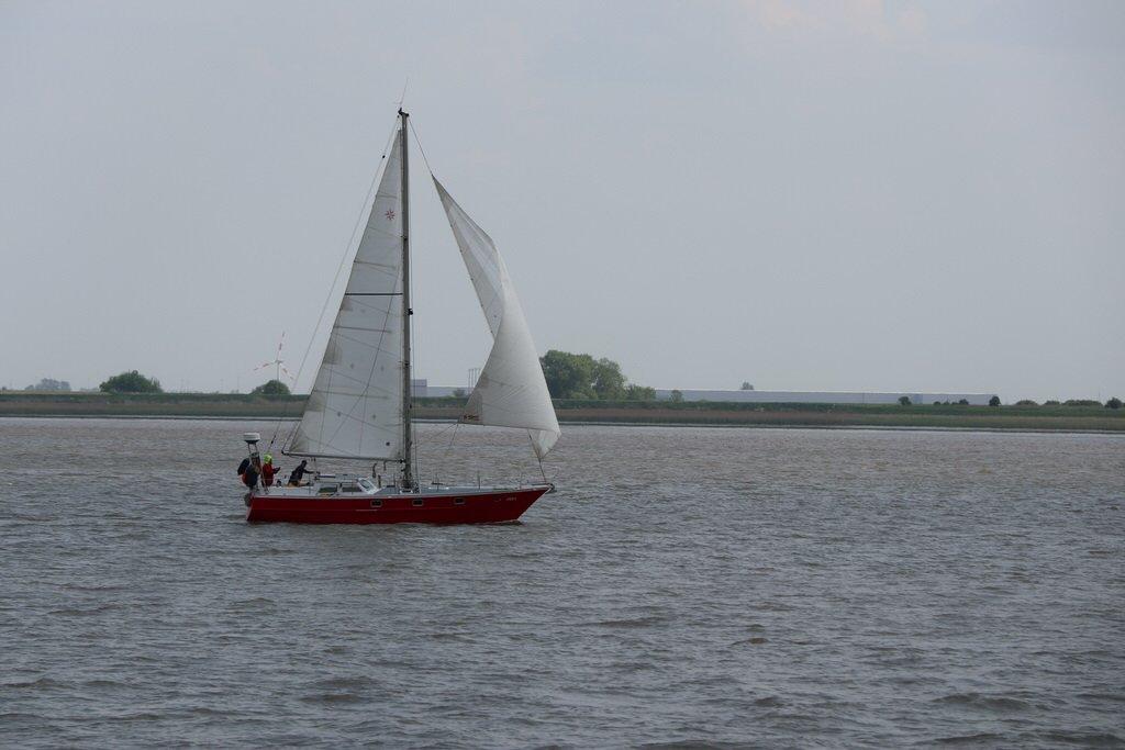 segelschiff auf der weser kurz vor bremerhaven