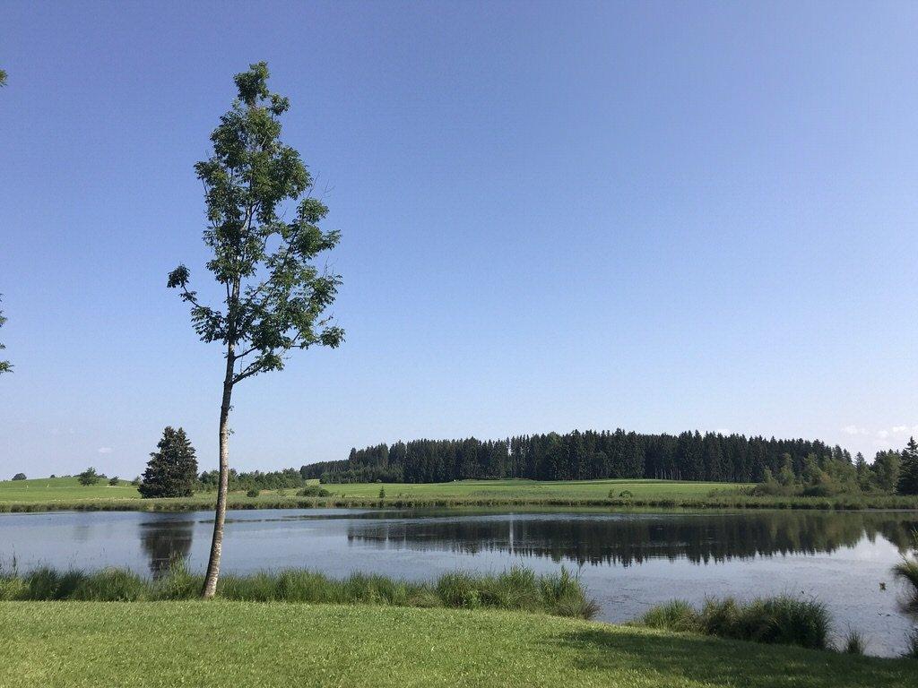 Der Kuhstallweiher liegt idyllisch in der Landschaft bei Marktoberdorf