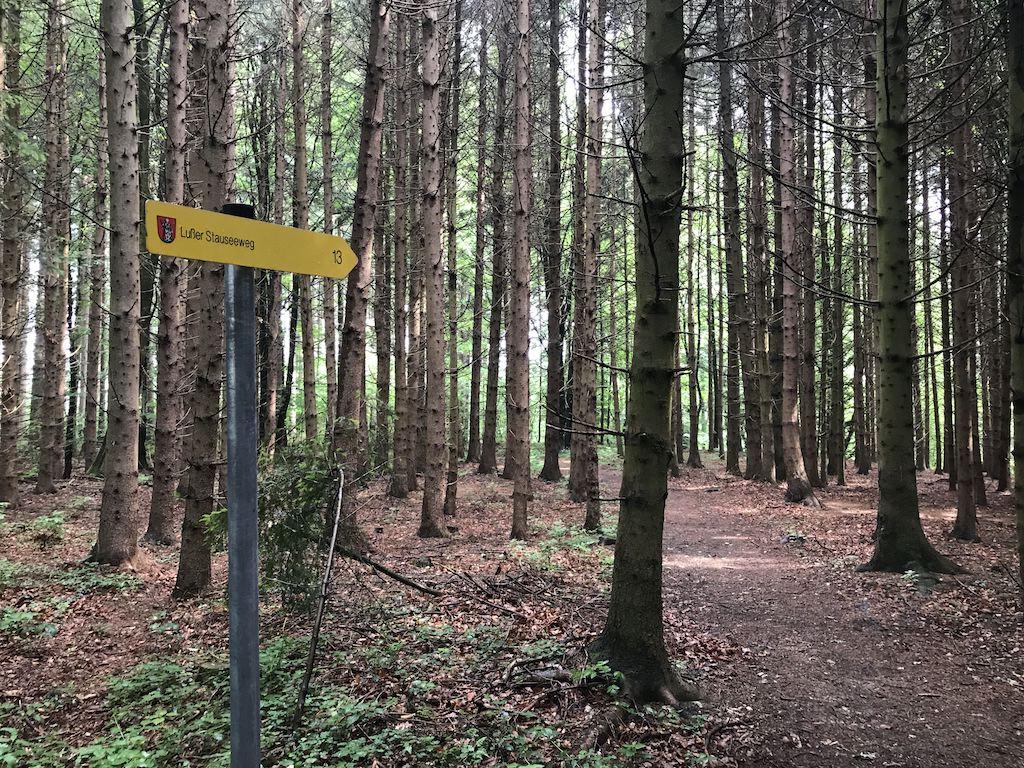 Der Wanderweg ist gut ausgeschildert auf dem Lußer Stauseeweg